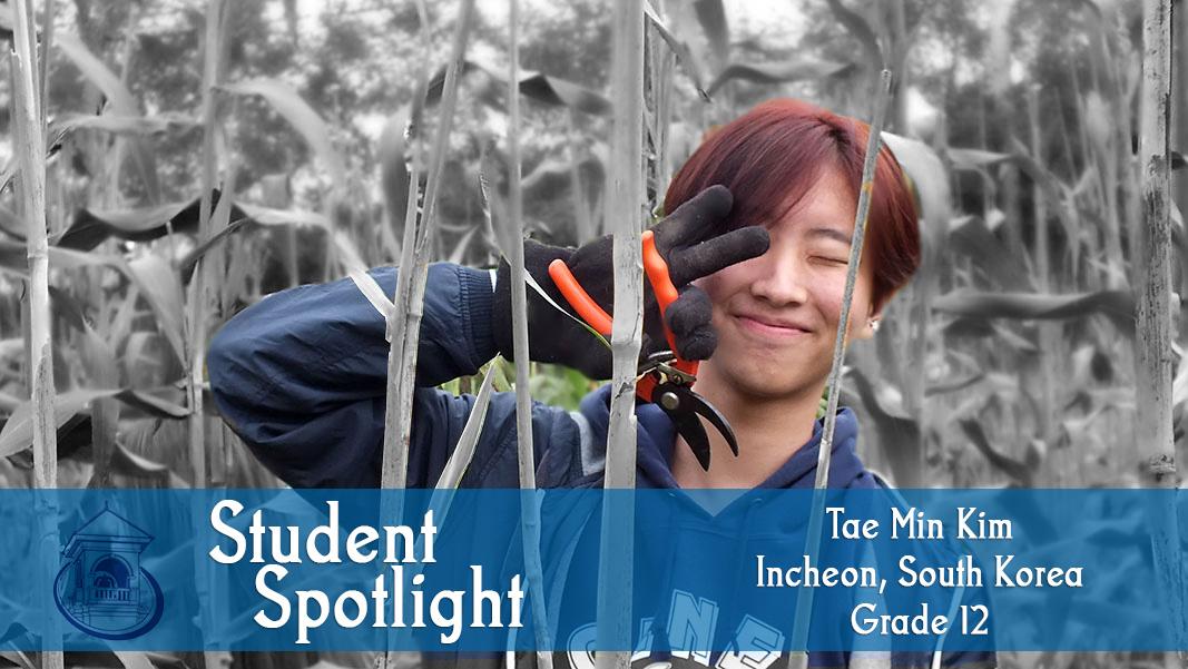 Student Spotlight: Tae Min Kim